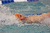 13th 2012 ASC Championships - Day Two Photo