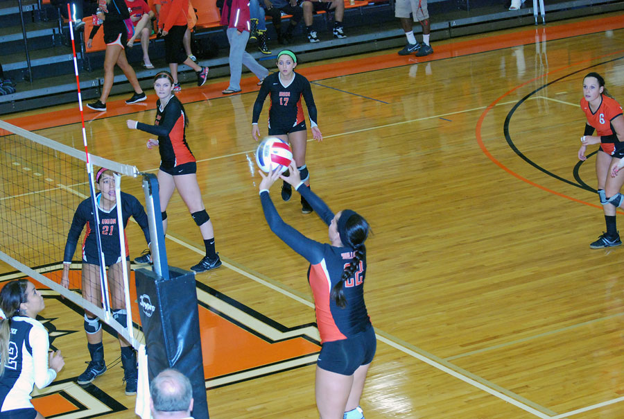 8th VB vs. Pikeville Photo