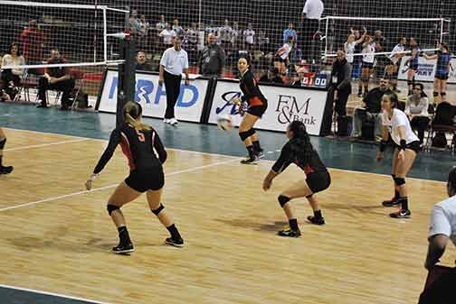 4th Volleyball vs. Hastings (NAIA Tournament) Photo