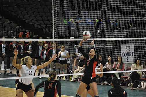 11th Volleyball vs. Hastings (NAIA Tournament) Photo