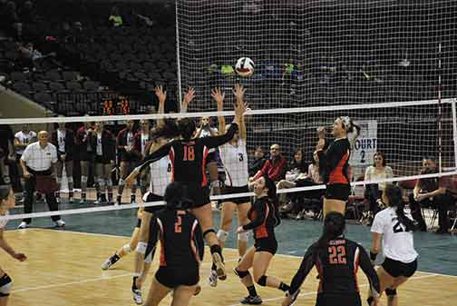 15th Volleyball vs. Hastings (NAIA Tournament) Photo
