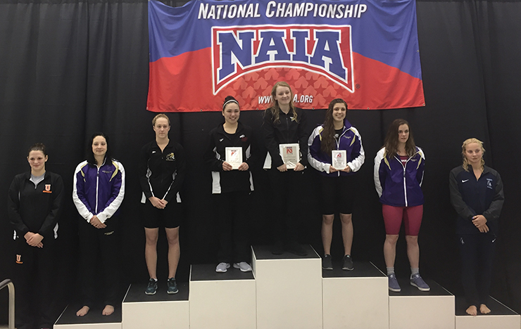 Photo for Kaufmann Nabs All-American Honors in 500 Freestyle