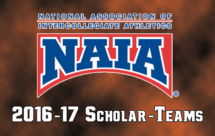 Photo for Three Union Programs Named 2016-17 NAIA Scholar-Teams